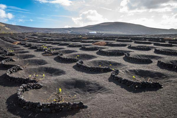 lanzarote-volcano-short-south-tour_1