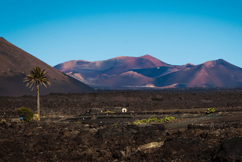 south_tour_lanzarote_3